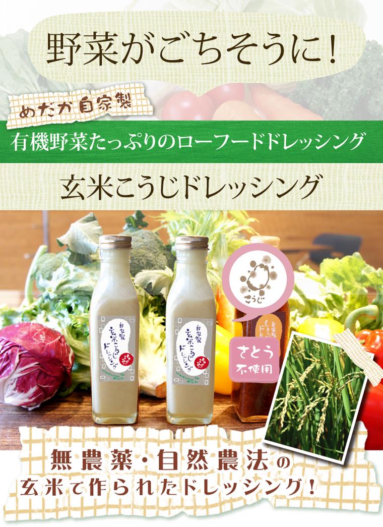 野菜がごちそうに!有機野菜たっぷりのローフードドレッシング。玄米こうじドレッシング